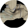 Foot Fracture Fixation